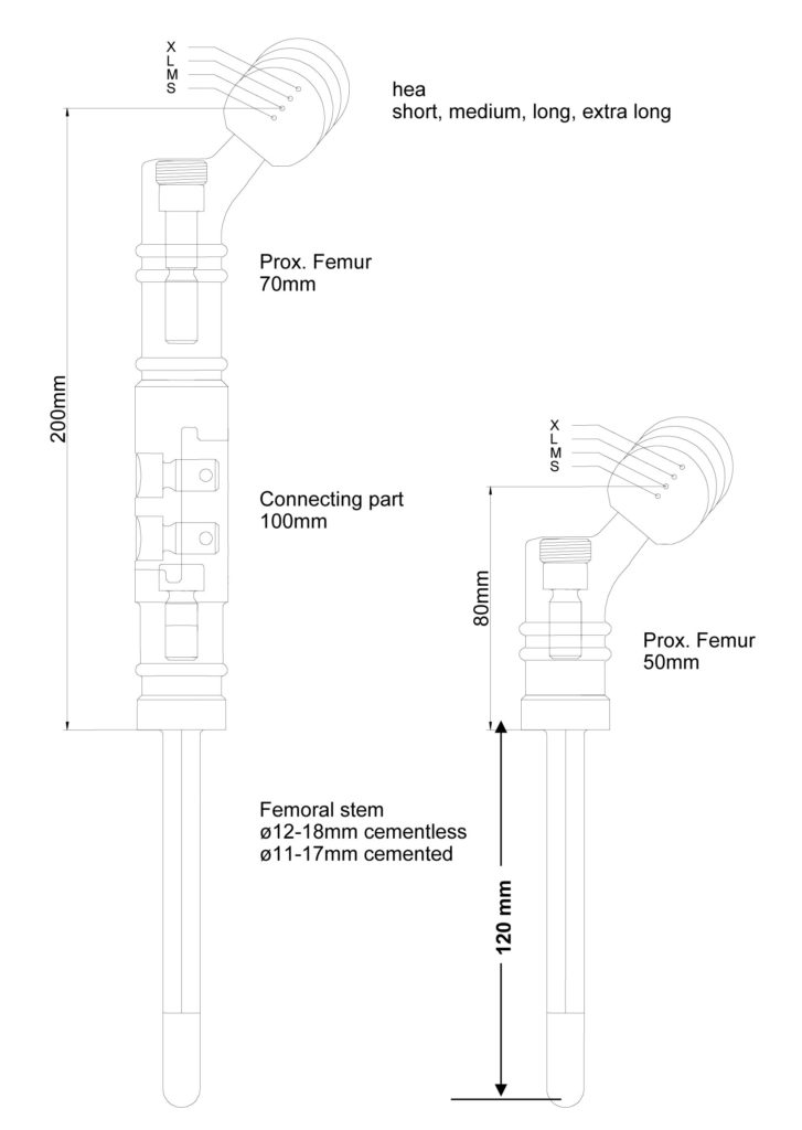 Proximal Femoral Replacement Implantcast North Americaimplantcast
